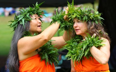 The Hula Lesson