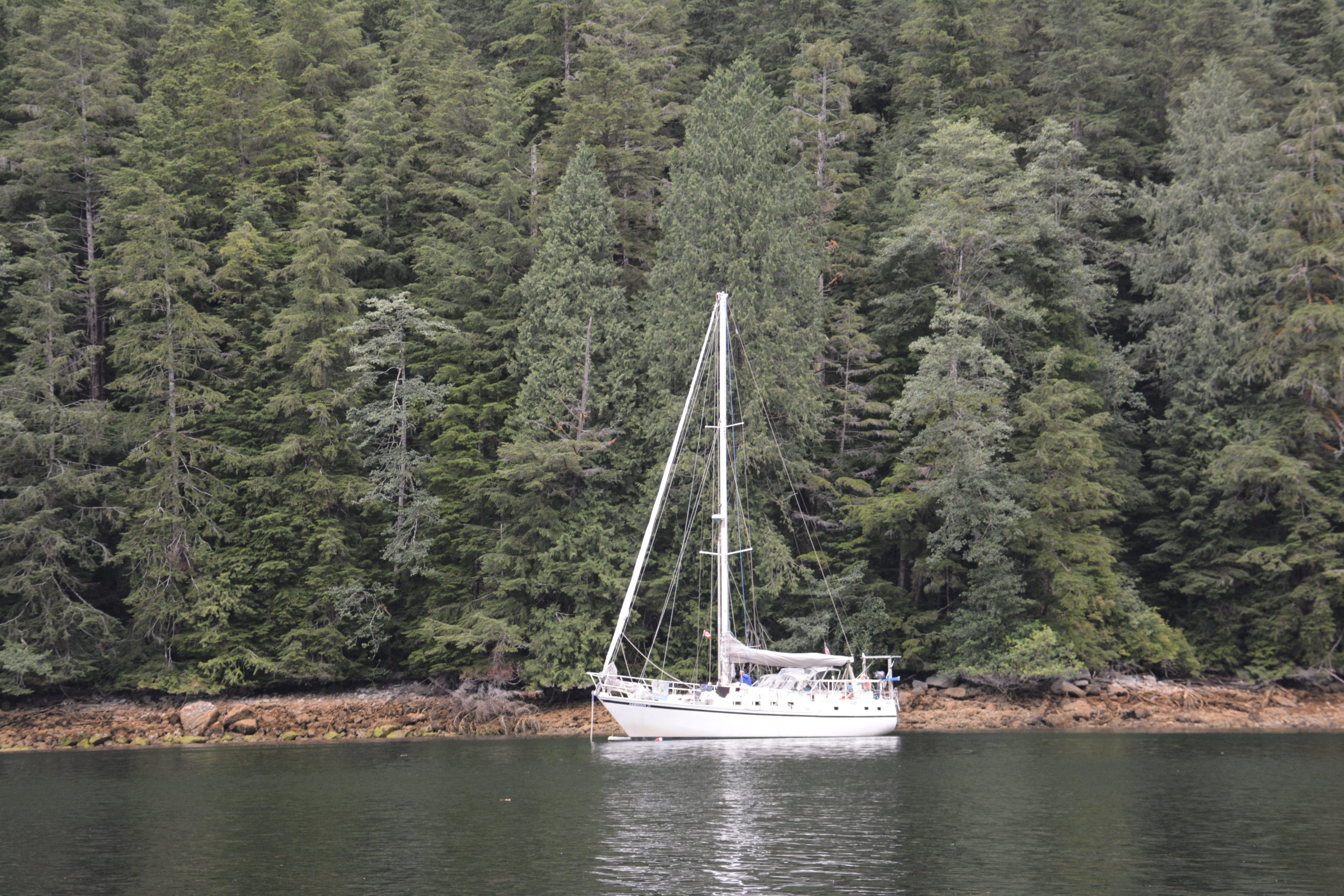 Gershon ll in Queen Charlotte Sound, BC 2019